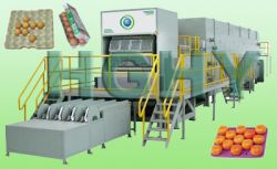 Egg Tray Machinery, Pulp Moluding