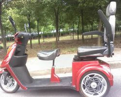 Ce Electric Mobility Scooter (btm-05b)