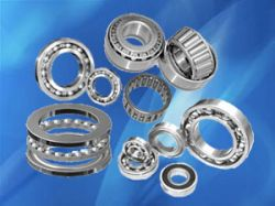 Bearings For Clark,zf,nsk,skf,ntn,etc.