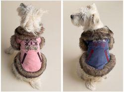 Juicy Dog Coats,warm Dog Outfits,dog Clothes