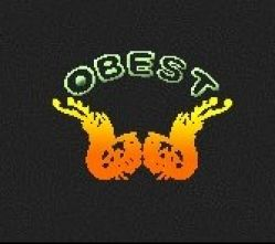 Shenzhen Obest Tech Co.,ltd