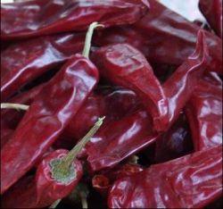 Red Hot Yidu Chilli