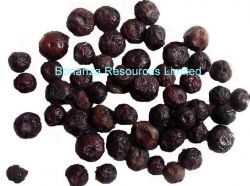 Fruit Snacks A Grade Freeze Dried Blueberry