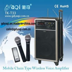 Multifunctional Amplifier, Pa Systems Tk-t33