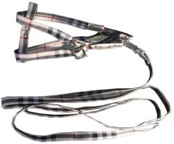 Lovely Dog Leash And Collar Set