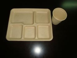 Biodegradable Tableware(tray,cap,bowl,plate,box)