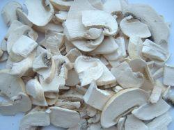 100% Purity Gmp Factory Freeze Dried Mushroom