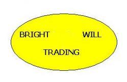 Bright Will International Trading Limited