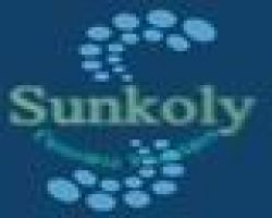 Sunkoly Electronic Co.,ltd]
