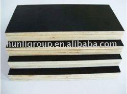 Poplar Black Film Faced Plywood