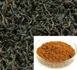 Black Tea Theaflavins