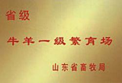 Liangshan Jinsheng Animal Husbandry Farms