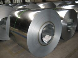 Suply Galvanized Steel Coil,gi,steel Sheet