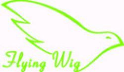 Flying Wig Co.ltd