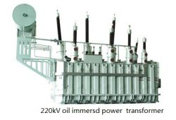 Shandong Dachi Eletric Co;ltd.