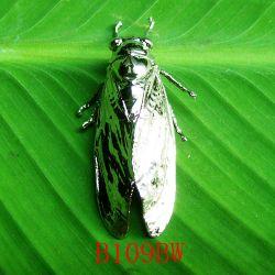 Cicada Brooch / B109bw