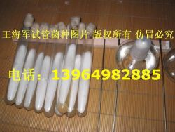 Shandong Province Yutai County Branch Letter Limited Edible Fungus