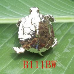 Turtle Brooch/b111bw