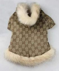 Gucci Dog Coat,fashion Dog Clothes