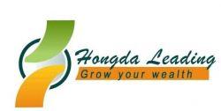 Hongda Leading Industrial Co.,ltd (beijing Office)