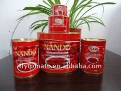 Double Concentrated Canned Tomato Paste For Africa