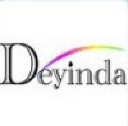 Hangzhou Deyinda Technology Co.,ltd