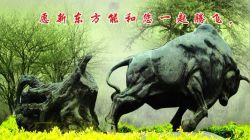 Digital Equipment Co., Ltd. Shandong Oriental
