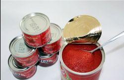 China 400g Tin Tomato Paste