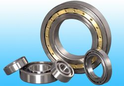 Htzc Cylindrical Roller Bearings