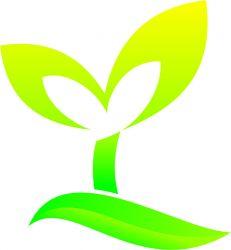 Yaitai Kuiran Company