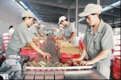 Jiangxi Bailin Industy And Commerce Co,ltd