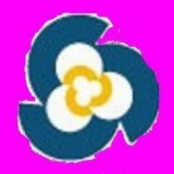 Renai Rubber Products Co., Ltd.