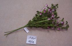 Four Seasonal Flowers