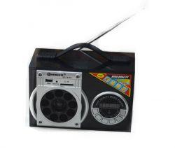Fm Radio With Romote Function Sgy-015u
