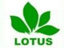 Lotus Industrial Co, Ltd
