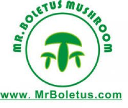 Mr Boletus Mushroom Industry Co.,ltd.