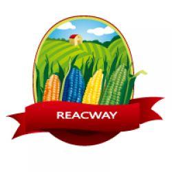 Yantai Reacway Co., Limitied