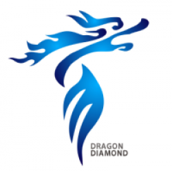 Guangzhou Dragon Diamond Technology Co., Ltd