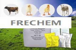Dicalcium Phosphate (dcp) 18% Feed Grade