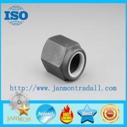 Customed High Strength Nylon Lock Nut Grade 10